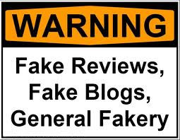 fake-blogs
